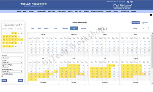 eMB Appointment Scheduler- Year View